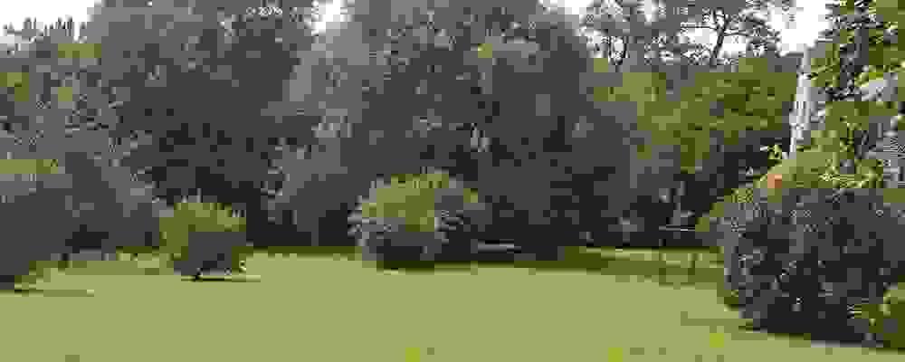 verjaardag Linter - Een magnifieke locatie voor een verjaardag op een steenworp van Linter - De Waterhoek